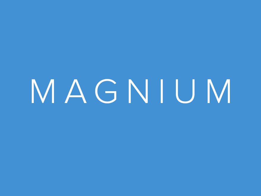 Magnium - Multi Purpose WooCommerce Shop Theme for Online Store